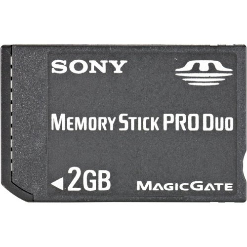 Sony 2 GB Memory Stick PRO Duo Flash Memory Card MSX-M2GS