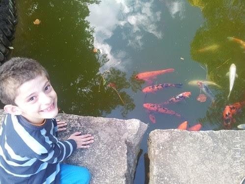 Mateo, reflejo y peces by Su La Vida la la la...