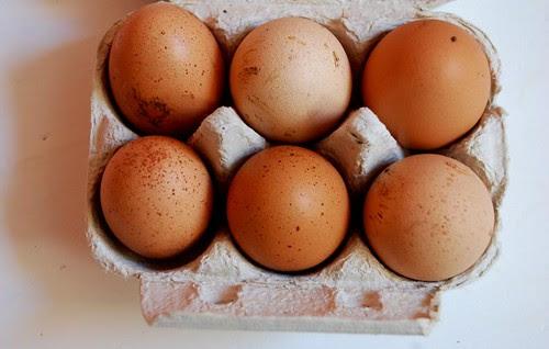 farm eggs 3