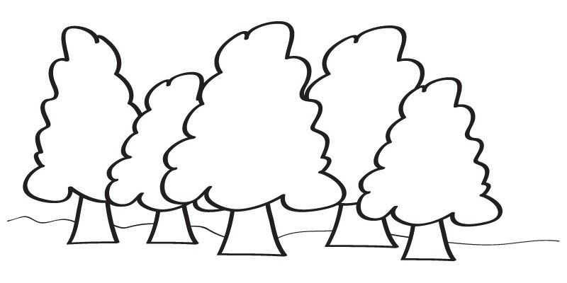 Orman Haftası Etkinlikleri 8 Okul öncesi Etkinlik Faliyetleri