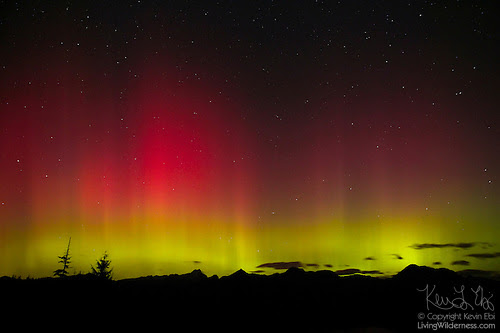 Northern Lights Over North Cascades, Washington
