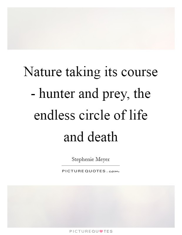Nature Taking Its Course Hunter And Prey The Endless Circle