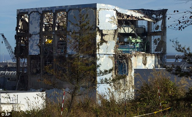 Stricken: Hydrogen explosions causes structural damage to four of the reactors at the plant after the earthquake and tsunami struck on March 11 last year