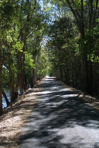 Dam Wall Road Fogg Dam