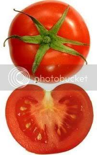 gambar buah tomato