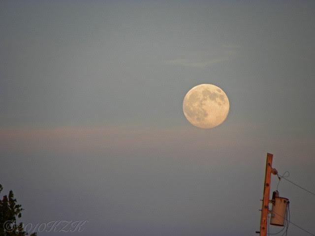 DSCN6746 22 SEP 10 moonrise