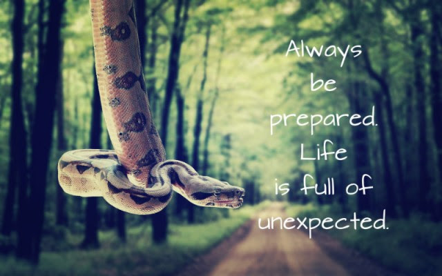 Unexpected Image Quotation 8 Sualci Quotes