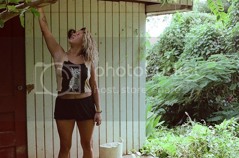 Coco frio, Puerto Rico, Surf, Contax G2, Film, Palm trees, Crash Boat Beach, Denasty, Sunrise, Holiday, Travel, photography, photo Denasty_zpsxp9dutdj.jpg