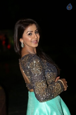 Nikki Galrani New Photos - 4 of 36