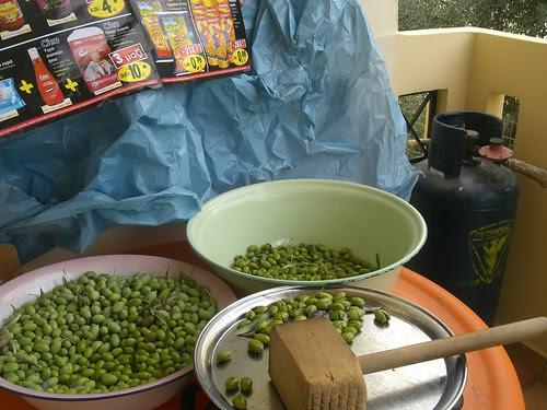 curing green olives for brine