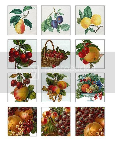 Victorian fruit free digital collage sheet