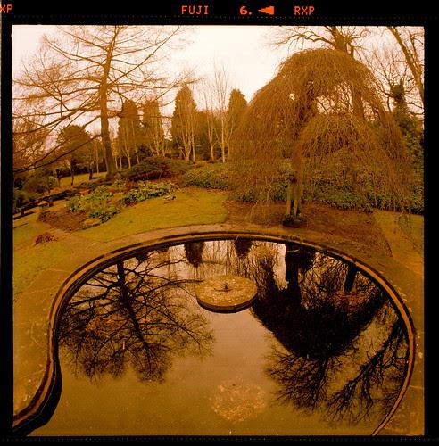 circular pond by pho-Tony