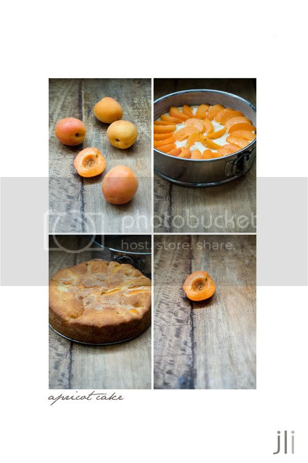 jillian leiboff imaging,sydney,food photography,baking,apricots,butter cake