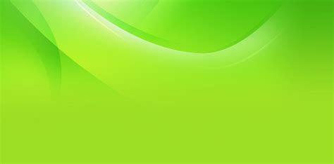 background hijau  background check