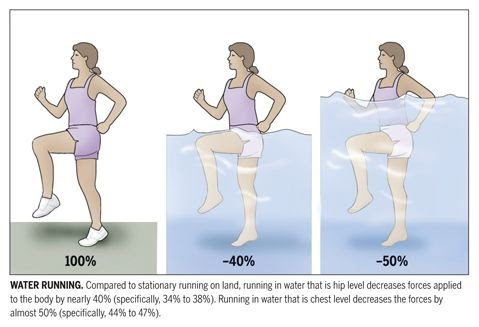 Aquatic Therapy Exercises For Low Back Pain Pictures