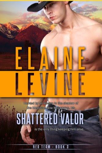 Shattered Valor (Red Team) by Elaine Levine