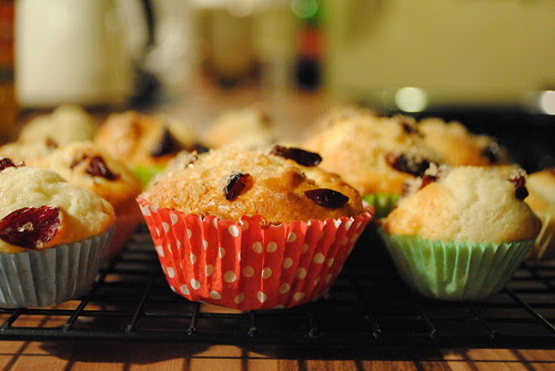 apple & cranberry muffins