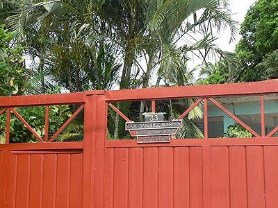 tuxla, ambiance tropicale.jpg