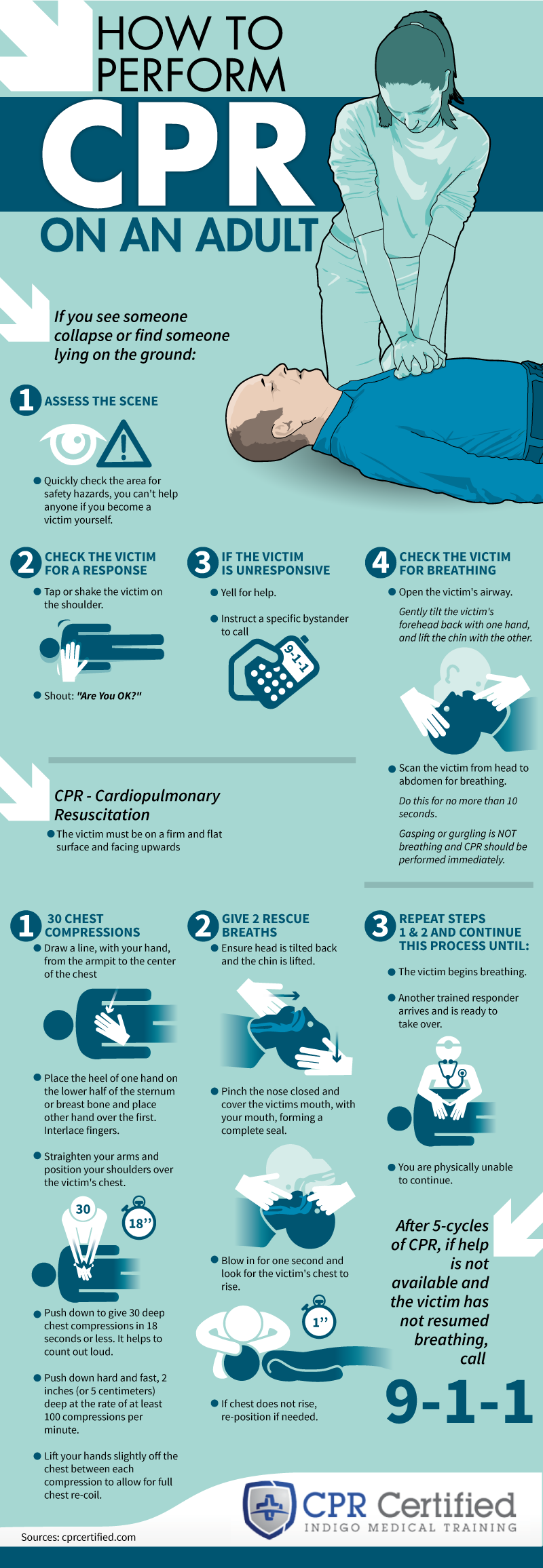 Infographic: How to Perform CPR on an Adult