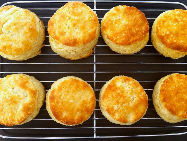 Homemade Buttermilk Biscuits, Closeup