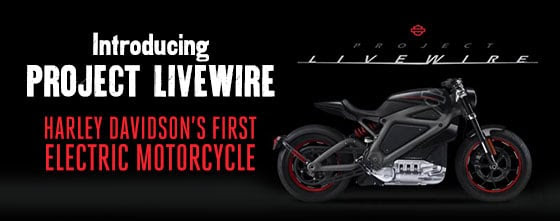 My, My My, hasn't Harley-Davidson been...