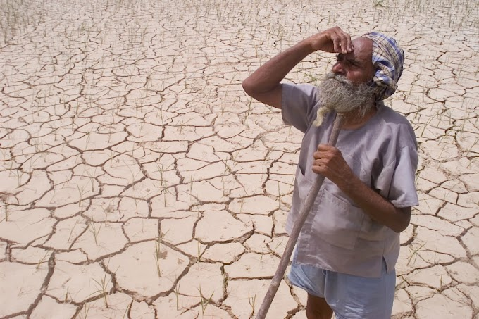 Farmers Facing Existential Crisis Sans Water, Need to Rejig Policy, Says Ex-Planning Commission Member