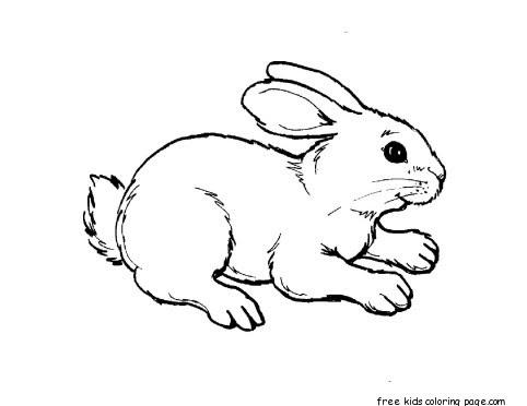 printable kids coloring pages animal rabbit  free