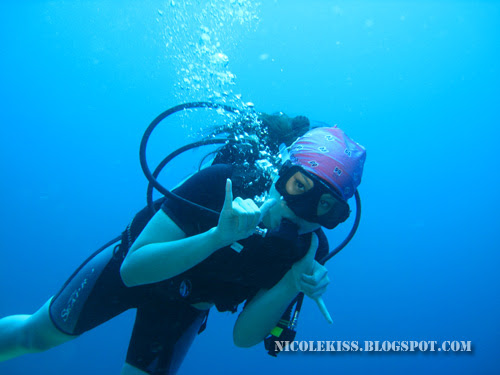 nicole diving