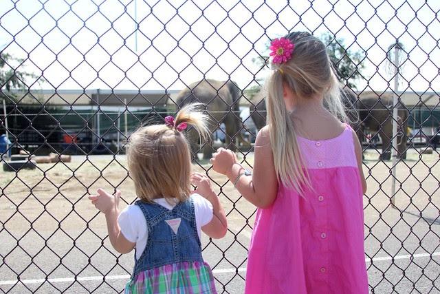 Circus July 2012 5
