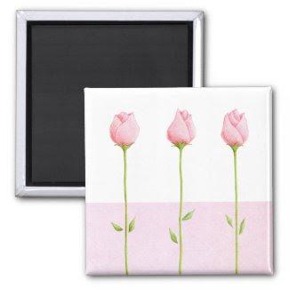 3 Pink Rosebuds Magnet magnet