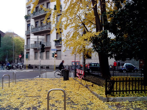 Arancione d'autunno by Ylbert Durishti