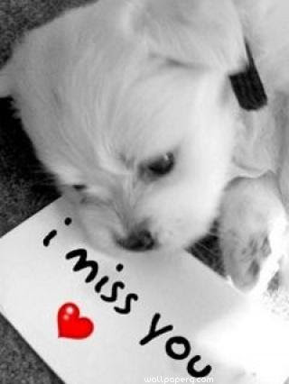 Download I Miss You Note Miss You Hd Wallpapers For Your Mobile