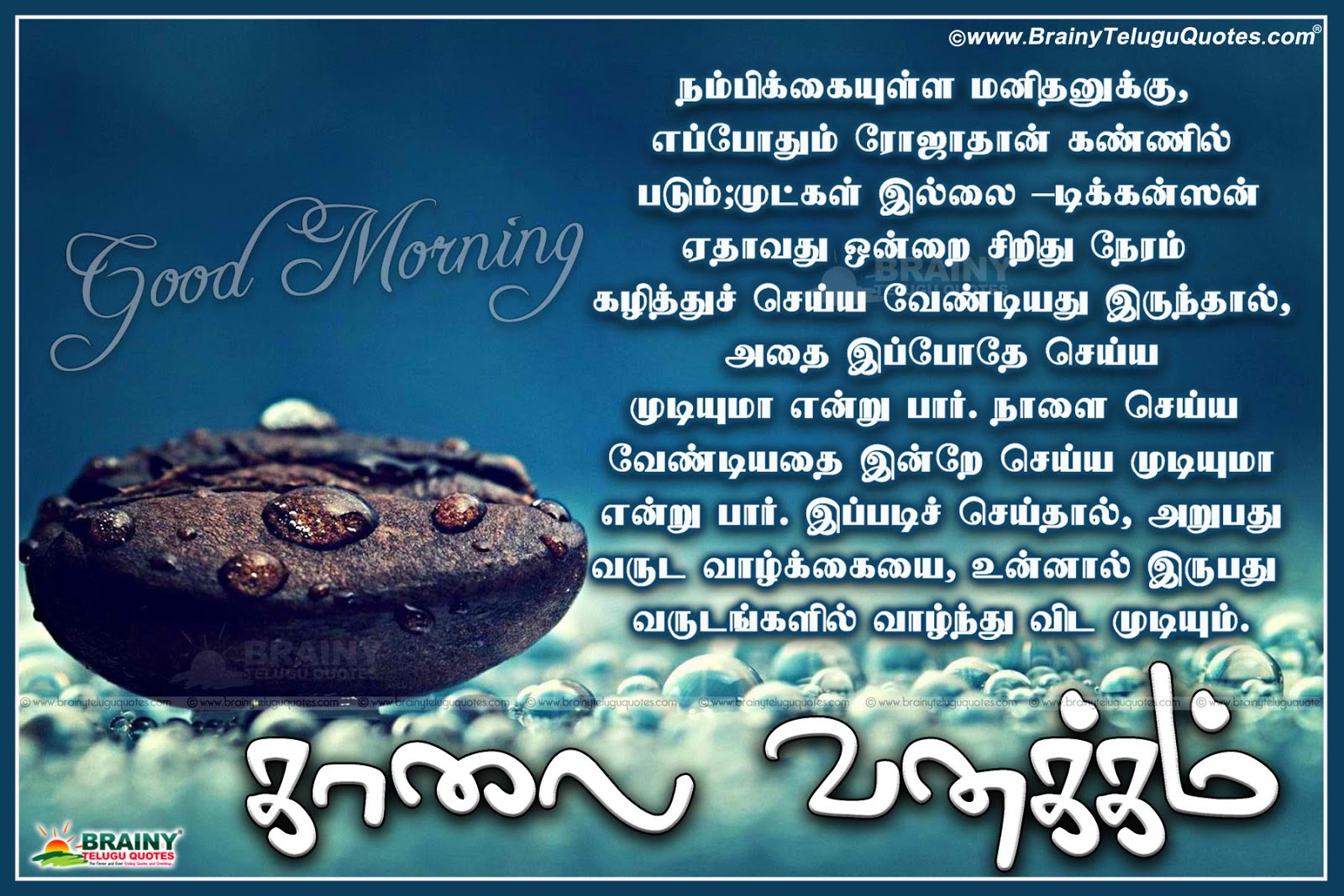 Good Morning Quotes In Kannada Language Good Quotes