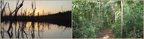 Park and Preserve Urugua-i Andresito Missions