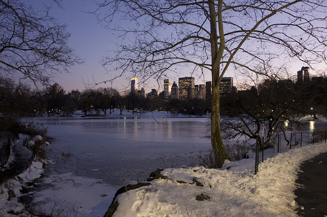 The Lake, in Central Park
