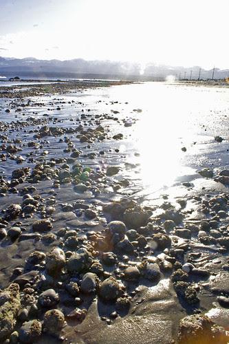 low tide at goose spit