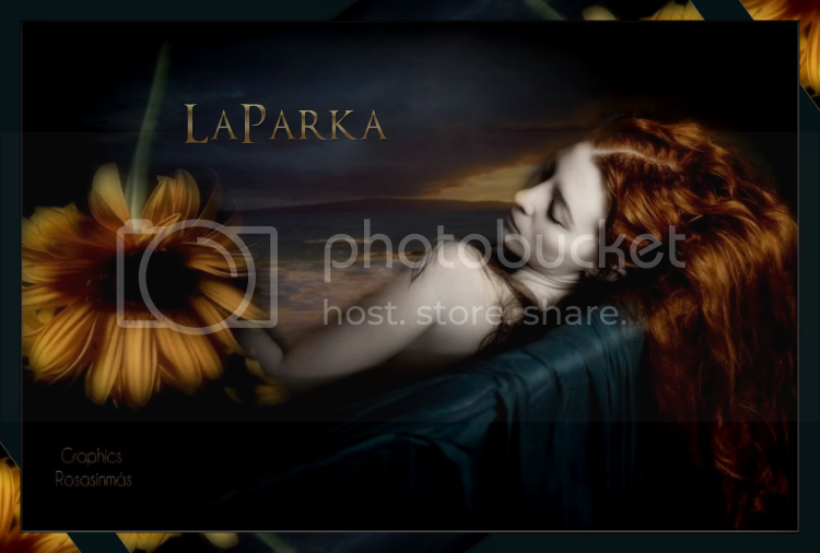 laparka-5.png picture by rositasinmas
