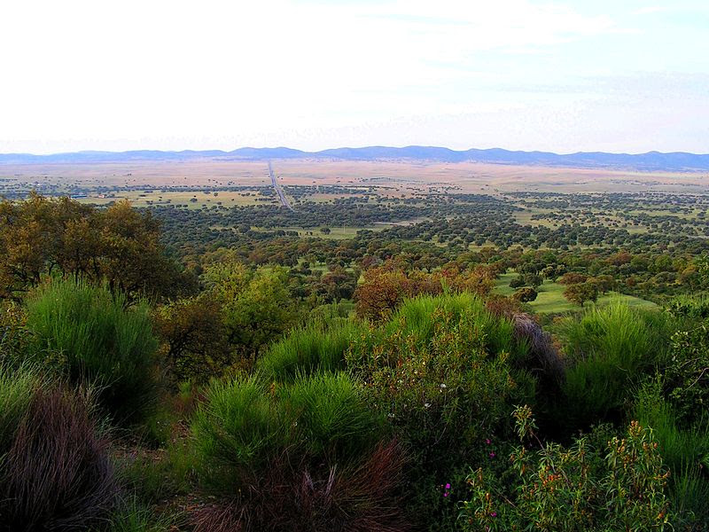 File:Vista del Valle de Alcudia.jpg
