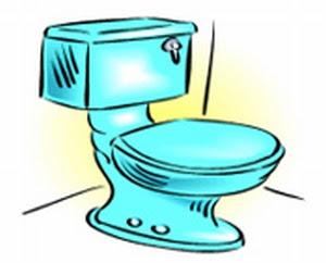 toilet-0406.jpg (300×242)