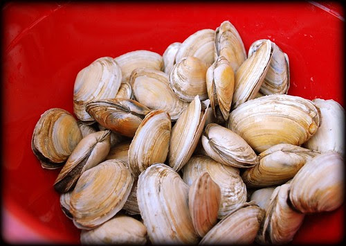 Steamers in bowl