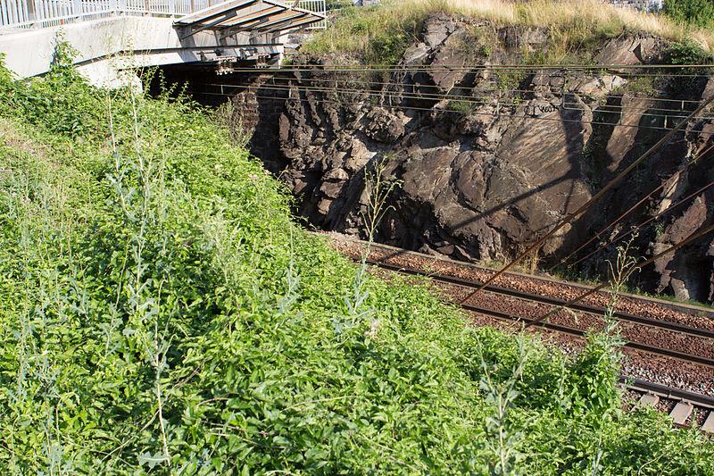 File:Ligne de la Maurienne - de Saint-Avre à Modane - IMG 1295.jpg
