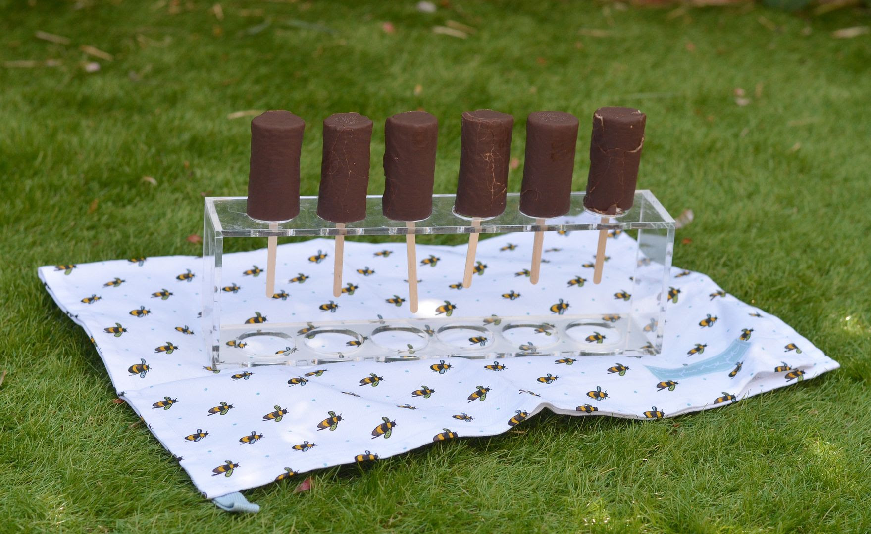 Choc Ices on a Stick