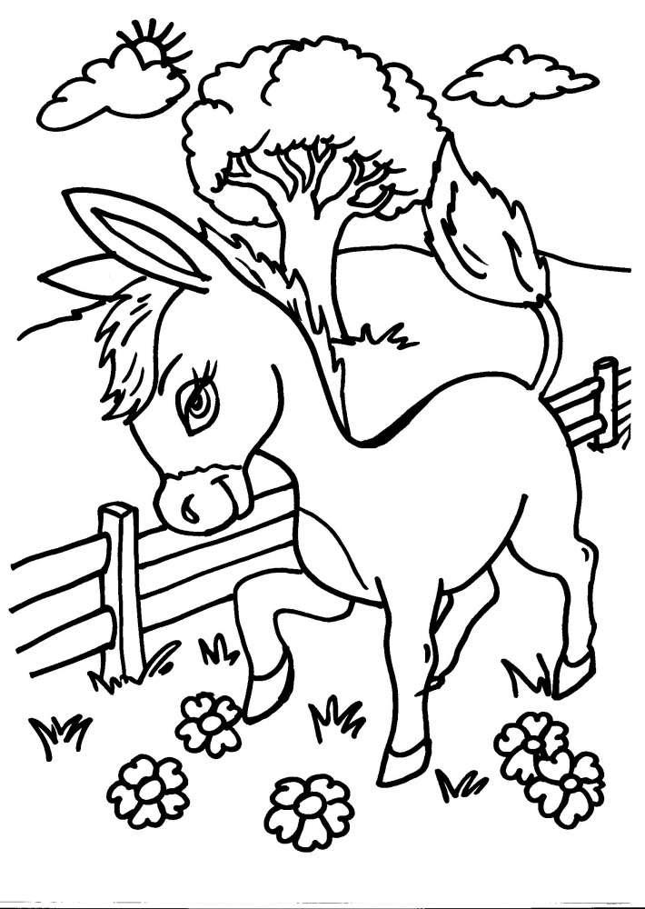 Disegni Da Stampare E Colorare Degli Animali Coloratutto Website