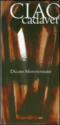 Delmo Montenegro, por Sergio Ernesto Ríos