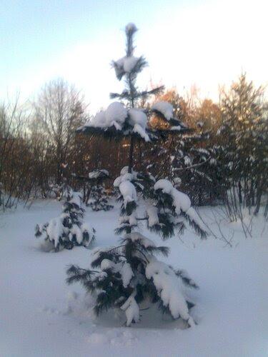 ...холодно зимой