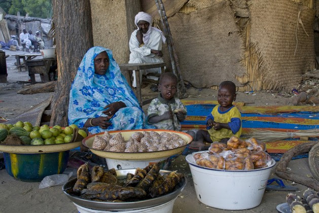 The military crackdown on Boko Haram has destroyed the economy around Lake Chad. Credit:Kristin Palitza/IPS