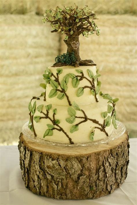 25  best ideas about Nature cake on Pinterest   Tree cakes