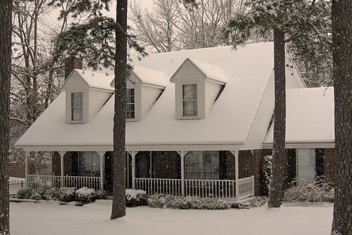 February Snow 6