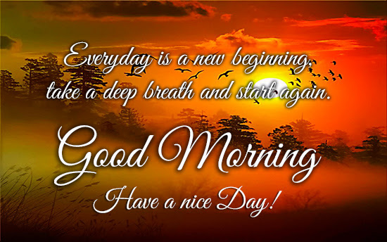 Good Morning My Dear Free Good Morning Ecards Greeting Cards 123