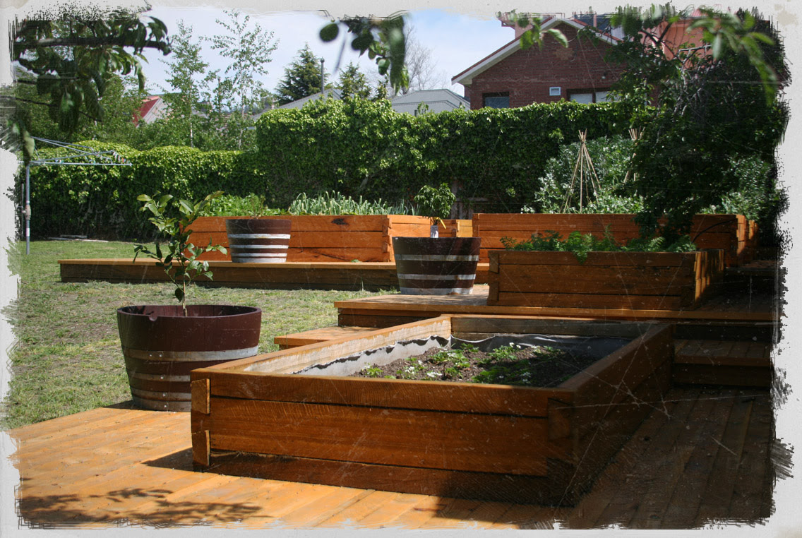 raised timber garden bed 15